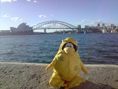 Penguins Around The World :)