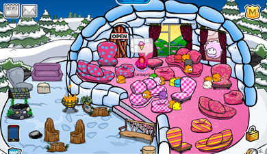 Saraapril's Furniture Store Igloo :)