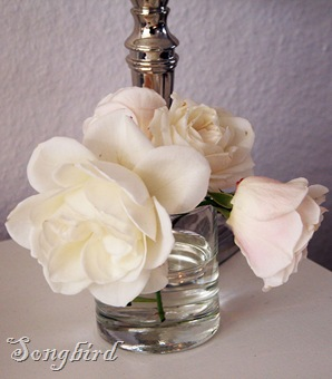 last white roses
