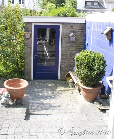 Garden Shed Before2