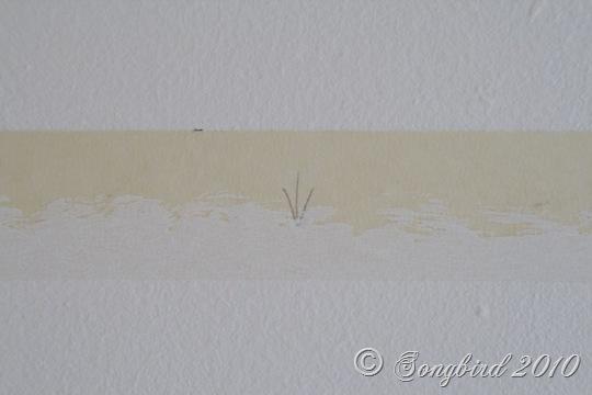 Paint tape Line