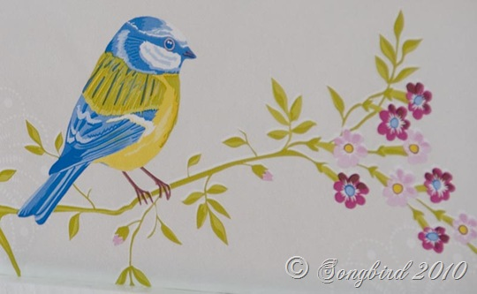Bleutit Bird Image