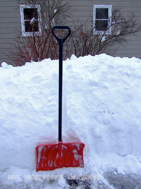 The Zen of Snow Shoveling