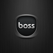 Boss Icons FN Theme