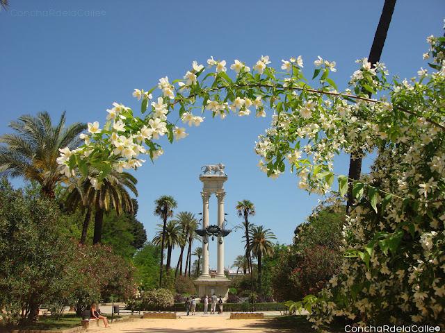 Sevilla los jardines de murillo la primavera y luis for Jardines de murillo