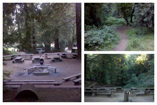 This Has Redwood Trees A Dried Creek Clearing And Picnic Tables For Some Post Wedding Pre Reception Fun Yums