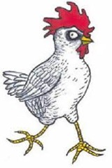 Old chicken