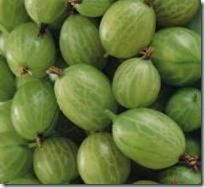 Green Gooseberries
