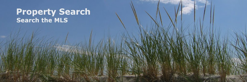 Ipswich's Cranes Beach Dune - Property Search Banner - Credit Laura Cardamom