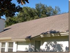Tampa Non Pressure Roof Cleaning 009