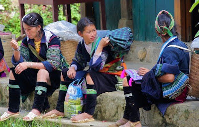 Hmong guides