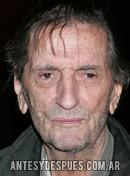 Harry Dean Stanton, 2009