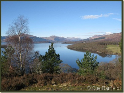 Loch Lomond view