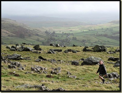 Small boy and erratics