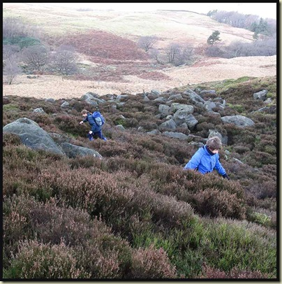 Two Sues trying to dodge fissures in the rocks hidden by the heather on Graham's 'off-piste' 'path'