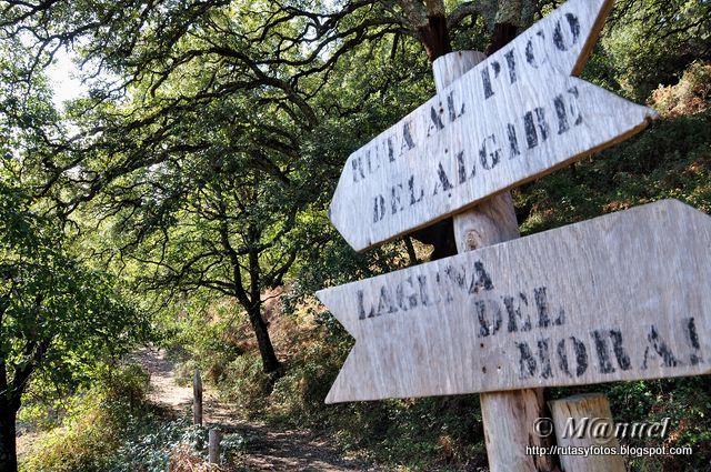 La Sauceda - Pico del aljibe