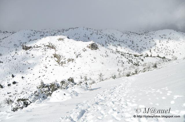 Quejigales - Torrecilla
