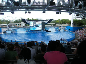 Día 3. Sea World de Orlando.