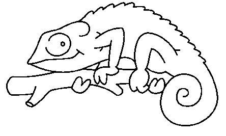 Laminas de reptiles para colorear - Imagui