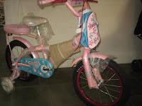 1 Sepeda Anak FAMILY BLUSH 16 Inci