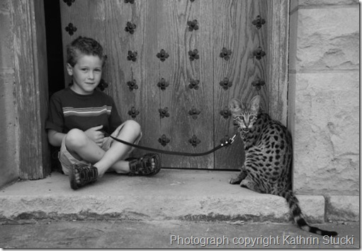 kathrin-stucki-photos-savannah-cat-and-son-2