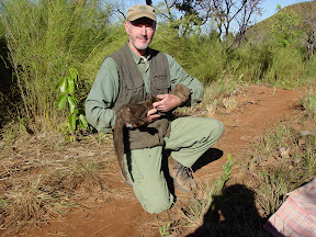 jaguarundi cat with Jim Sanderson