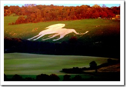 Chalk lion Whipsnade lion pictures by Today is a good day