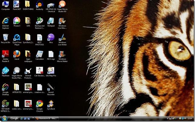 tiger-wallpaper-11