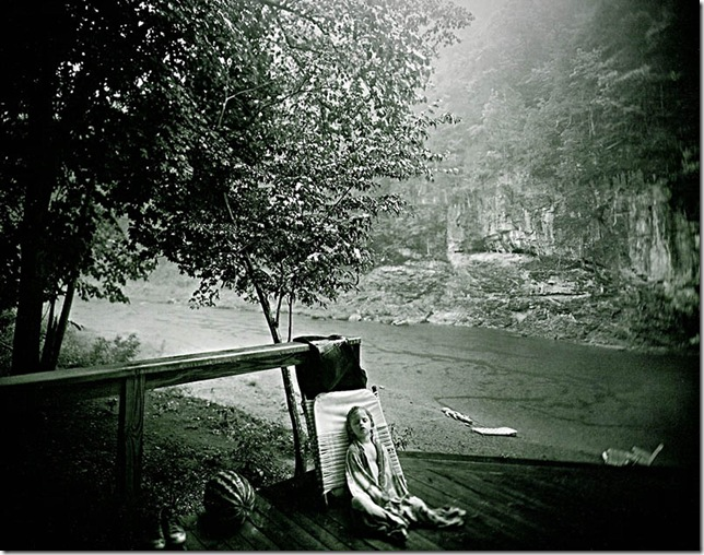 sally mann -alligator