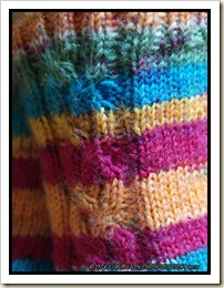 Tresse socks - cable close-up