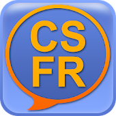 Czech French dictionary