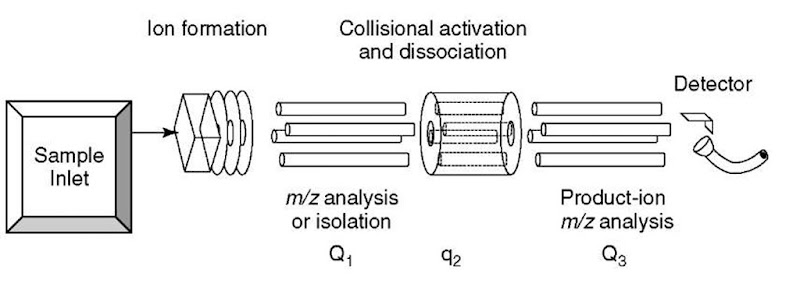 Techniques for ion dissociation (fragmentation) and scanning in MS on