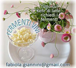 Richiedi i fermenti vivi per iniziare la tua produzione di Kefir di latte