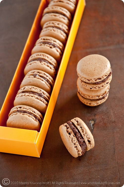 Rooibos Chocolate Chai and Sweet Spicy Chocolate Cinnamon Macarons (0023) by MeetaK