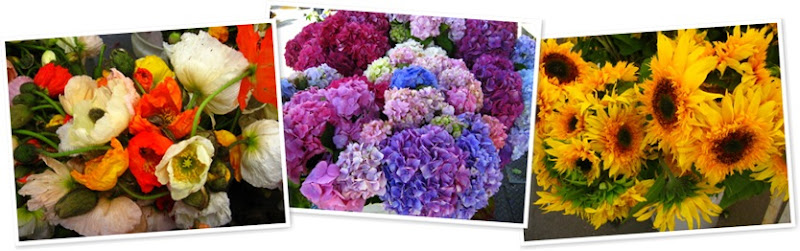 View SF flowers