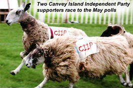 CIIP supporters race to the polls