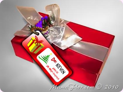 Etiquetas para el Regalo de Navidad