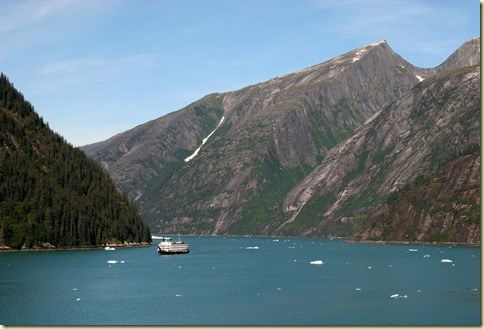 Tracy Arm fiord (25) copy