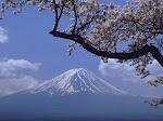 赵建伟:让人匪夷所思的日本