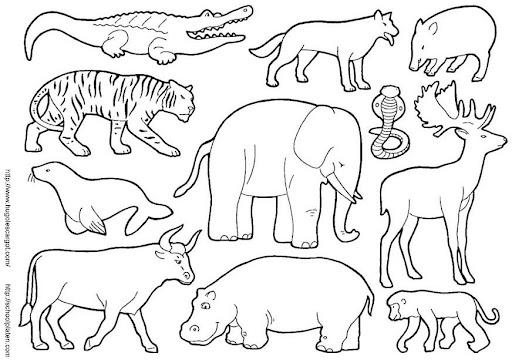 Dibujos De Animales Terrestres Para Colorear E Imprimir: COLOREAR ANIMALES SALVAJES