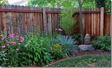 100703_backyard_fence2
