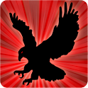 Furious Eagles icon