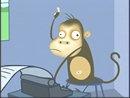 monkey_130_roll