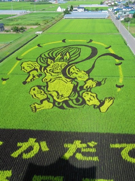 rice-paddy-art6