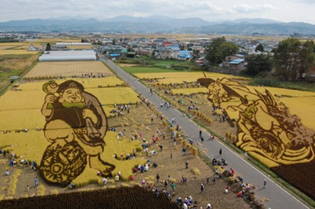 rice-paddy-art2