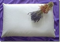 Organic Aromatherapy Buckwheat Pillow