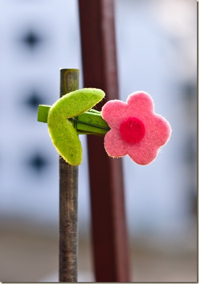 proof-of-fun-decoration-flower-balcony