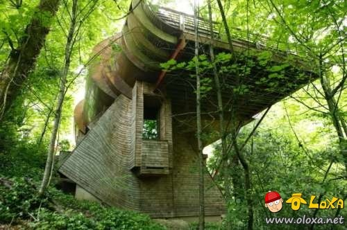 houses-built-in-nature-21