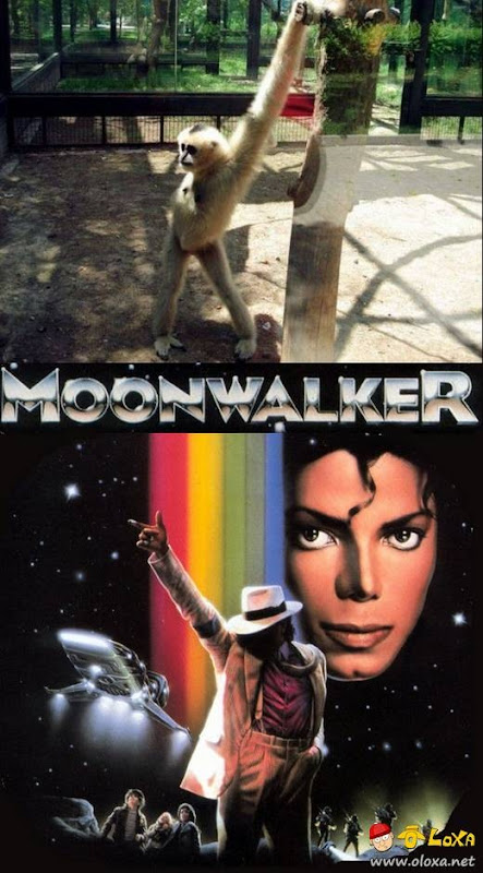 monnwalker