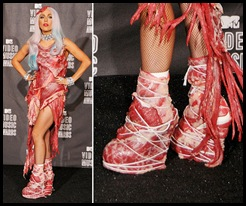 Lady Gaga's Meat Shoes